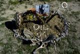 Osho Inipi Circle 21° anno - sabato: pausa tra un Inipi e l'altro